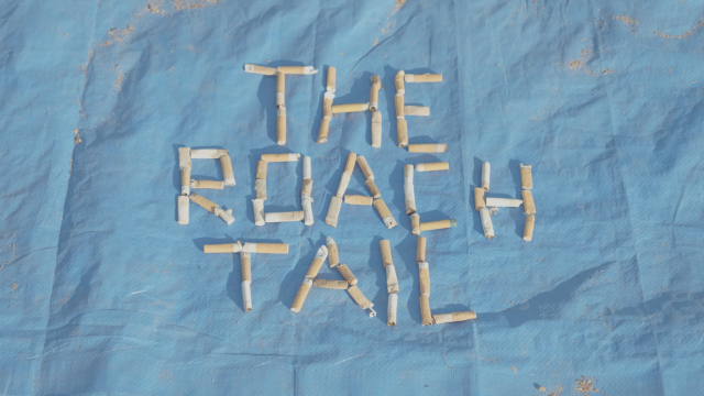 The Roach Tail Returns