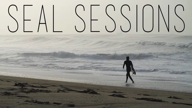 Seal Sessions // January 2016