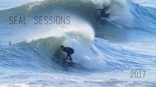 Seal Sessions Pt 2 // 2017