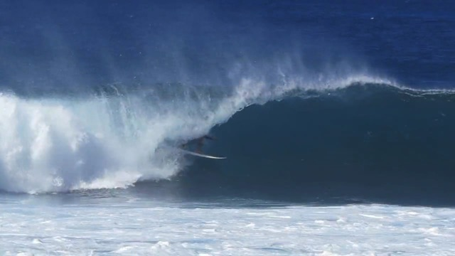 Wallace Vasco Hawaii 15-16