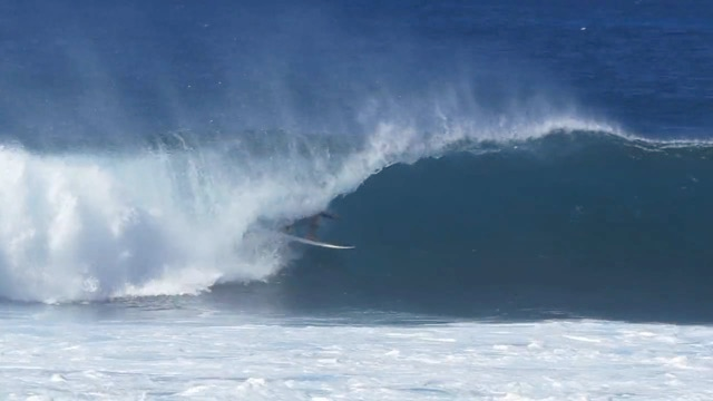 Wallace Vasco Hawaii 15-16