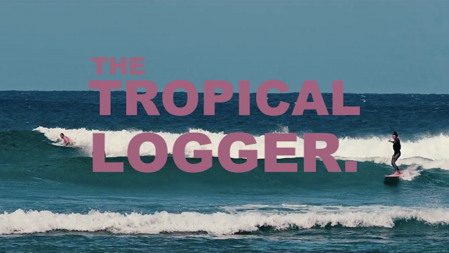 The Tropical Logger. (Rosie Jaffurs)