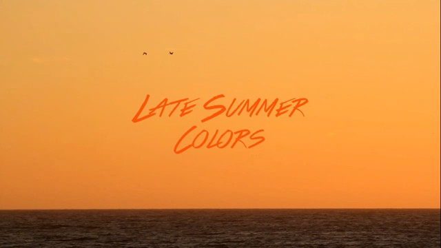 Late Summer Colors