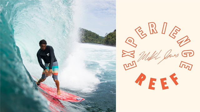 Reef Experience with Mikala Jones