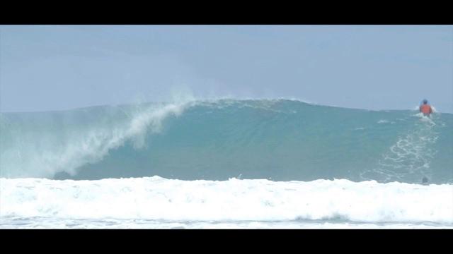 Maui Or Indo?