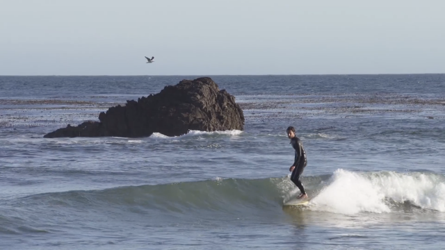 California With Diogo Appleton | The Sound Of Change