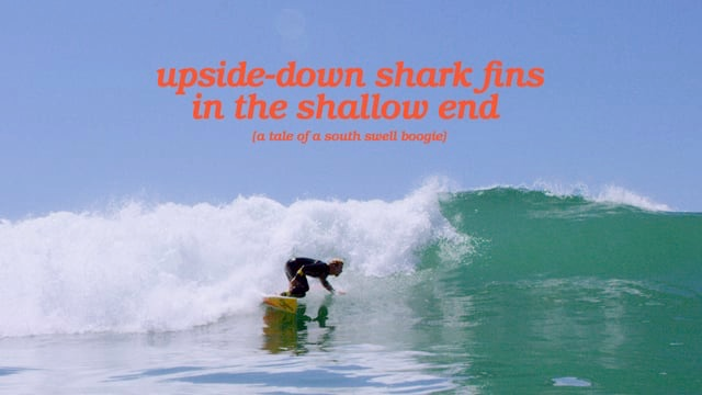 upside-down shark fins in the shallow end (a tale of a south swell boogie)