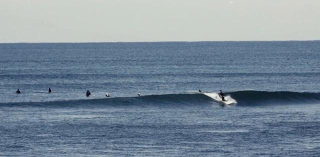 POLEN SURF CRAFTS PROMO