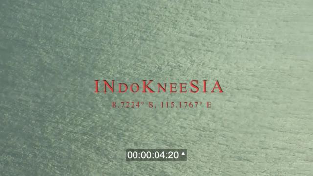 Indokneesia 2019.