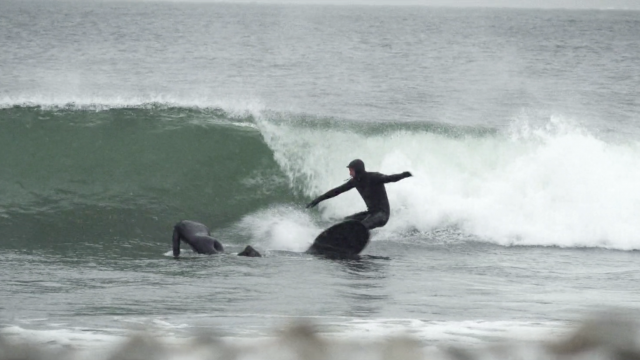 Winter surf in Sweden - Red Epic-W
