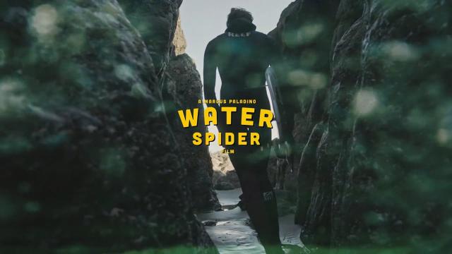 Waterspider