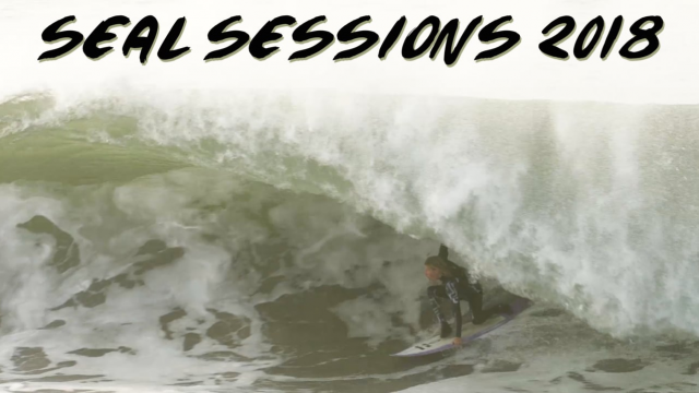 Seal Sessions 2018