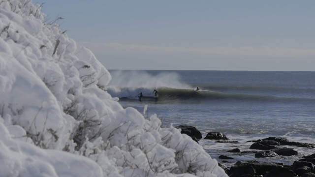 Surfing in a Winter Wonderland