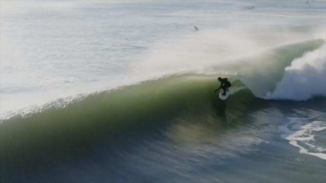 Surf Taco -Jersey Shore originals