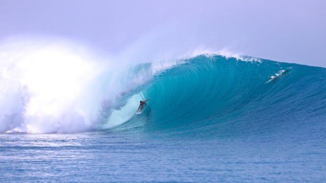 WEBSTER SURFBOARDS: NAPALM