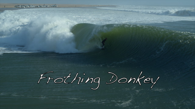 Frothing Donkey