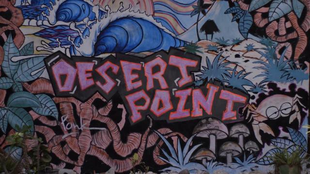 Throwback Desert Point