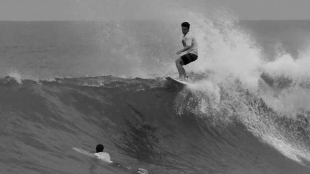 Chilli Surfboards - Black Vulture