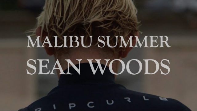Sean Woods - Malibu Summer