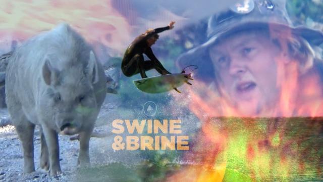 SWINE & BRINE