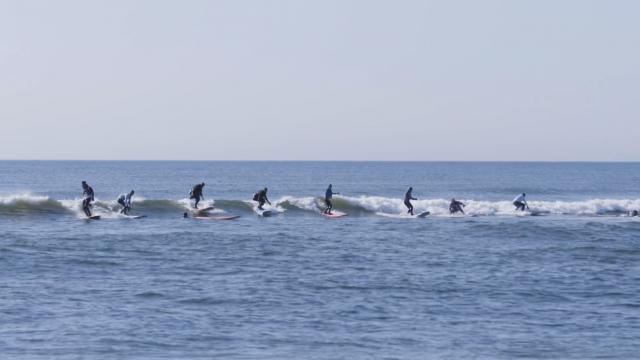 Surf season 2017 open