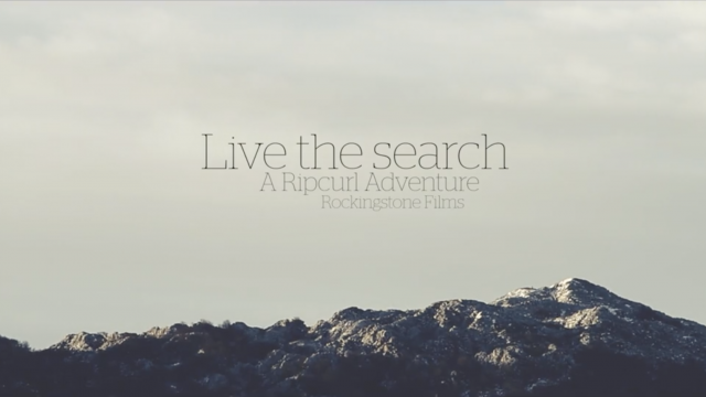 Live The Search (Pt.4)