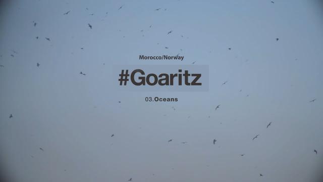 #GOARITZ - OCEANS