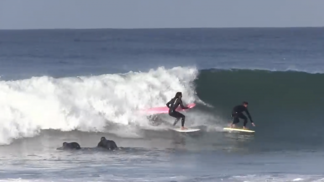 Surfing all boards at Seaside Reef - Kalani Robb, Joel Tudor, Johnny Redmond & More