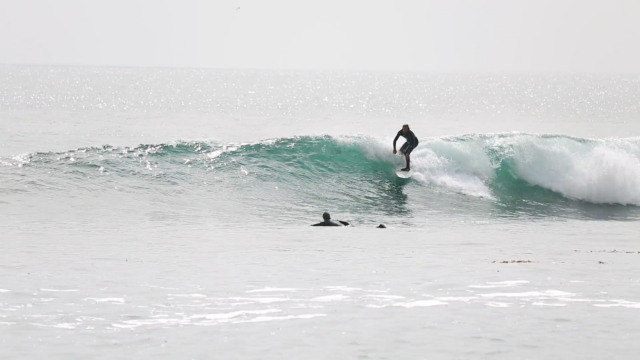 Working Class Waves - Rozsa sighting at Rincon