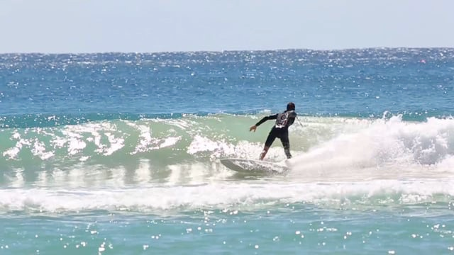Waterborn Cheap Thrills Retro Fish Surfboard