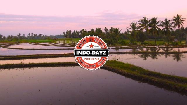 INDO - DAYZ  episode_1