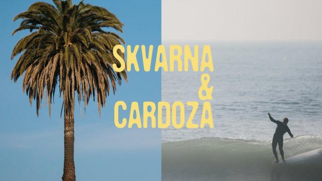 SKVARNA & CARDOZA