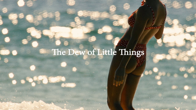 The Dew of Little Things