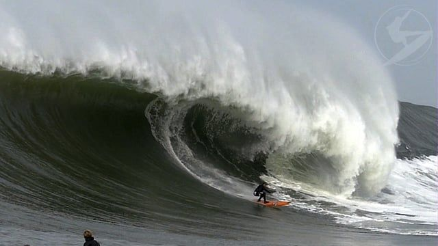 Santa Cruz Waves Presents:  Massive Mavericks!