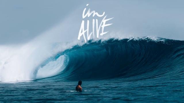 IM Alive // Tiger Tracks