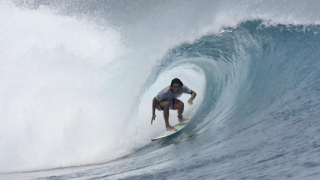 Stuart Surfboards